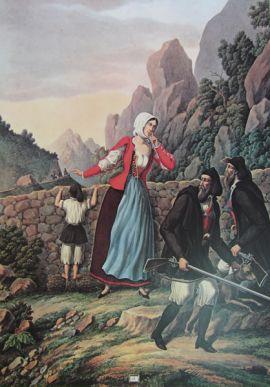 Tavola n.13