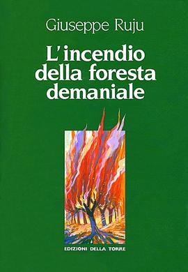 L'incendio della foresta demaniale