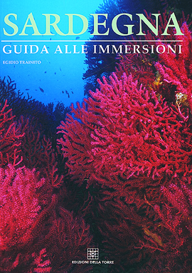 Sardegna. Guida alle immersioni (rilegato)